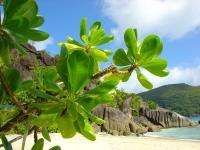 Oferta Seychelles