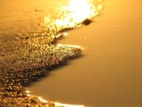 Autocar Nisipurile de Aur