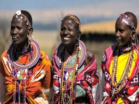 Oferta Kenya