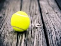 Turnee de tenis